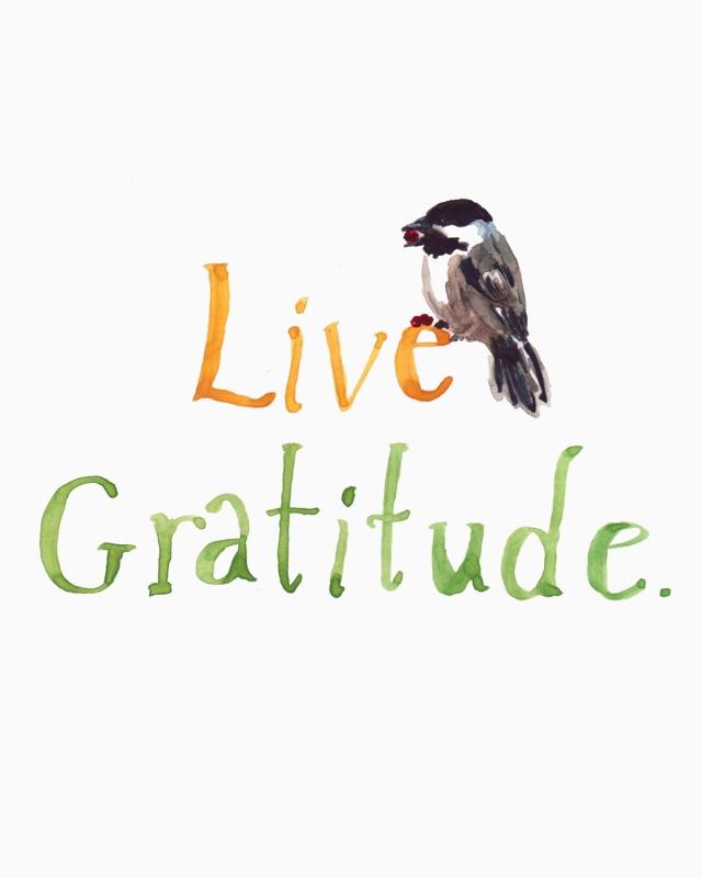 gratitude_smfile:bing:https-::yourmesshismessage.wordpress.com